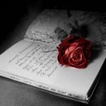 Revista Poezia – Opinii la aniversarea celui de-al 50-lea număr